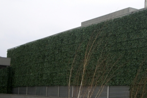 Applications of Artificial Ivy